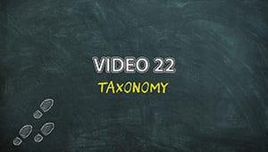 PLAM4V22: Taxonomy